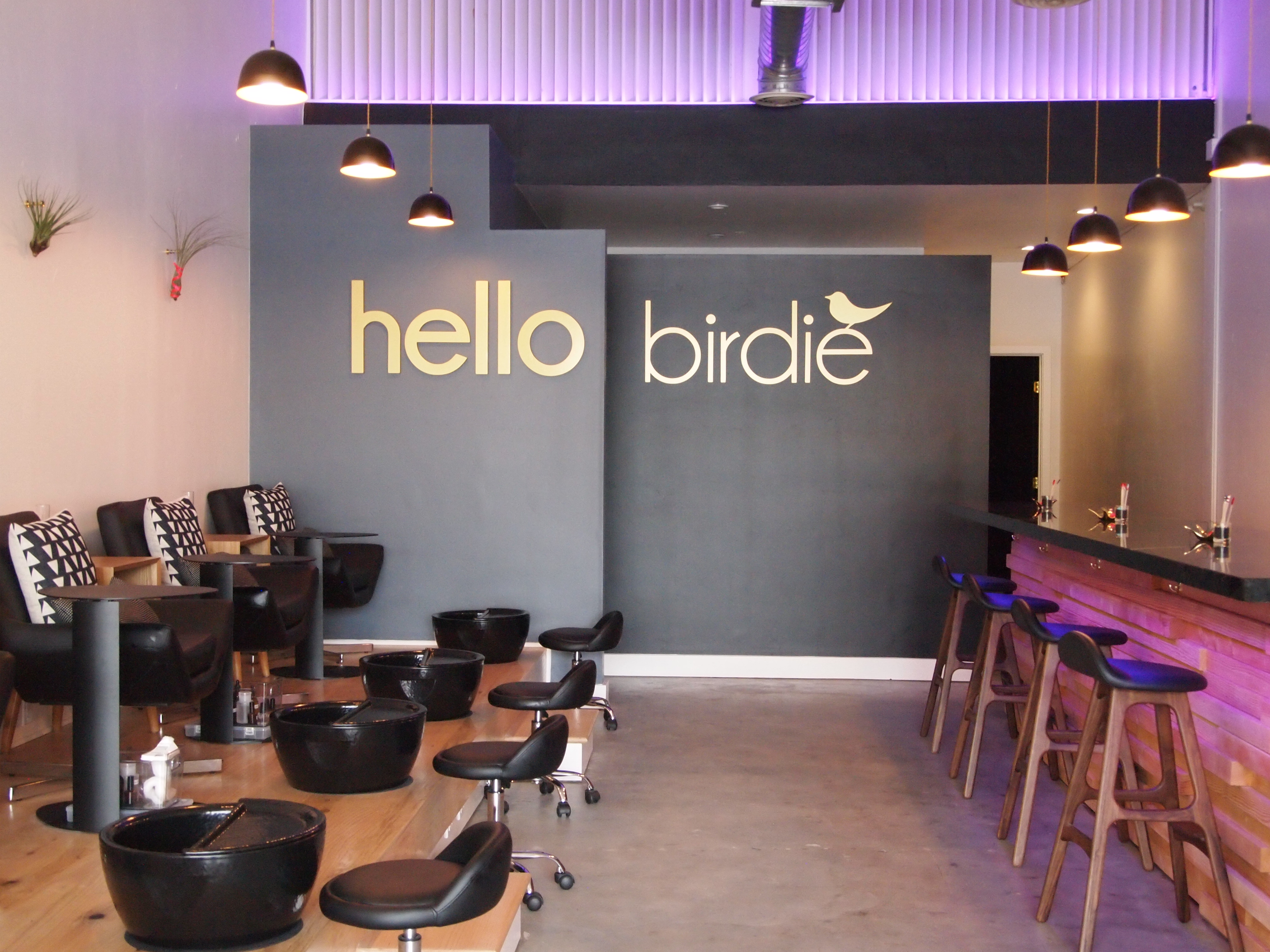 Nails — Hello Birdie Nail & Lash Lab