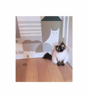 little Lola + her likeness