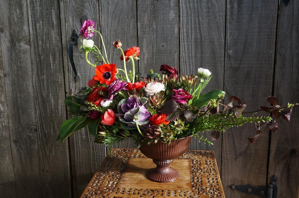 Chloris Floral, Petaluma CA