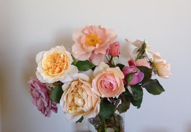Photo:Venn Floral