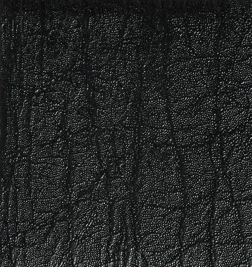Savana-B231.jpg