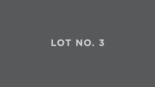 Lot_No_3.jpg