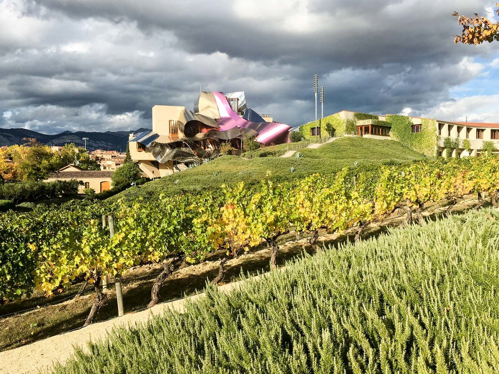 Marques De Riscal (5 of 5).jpg