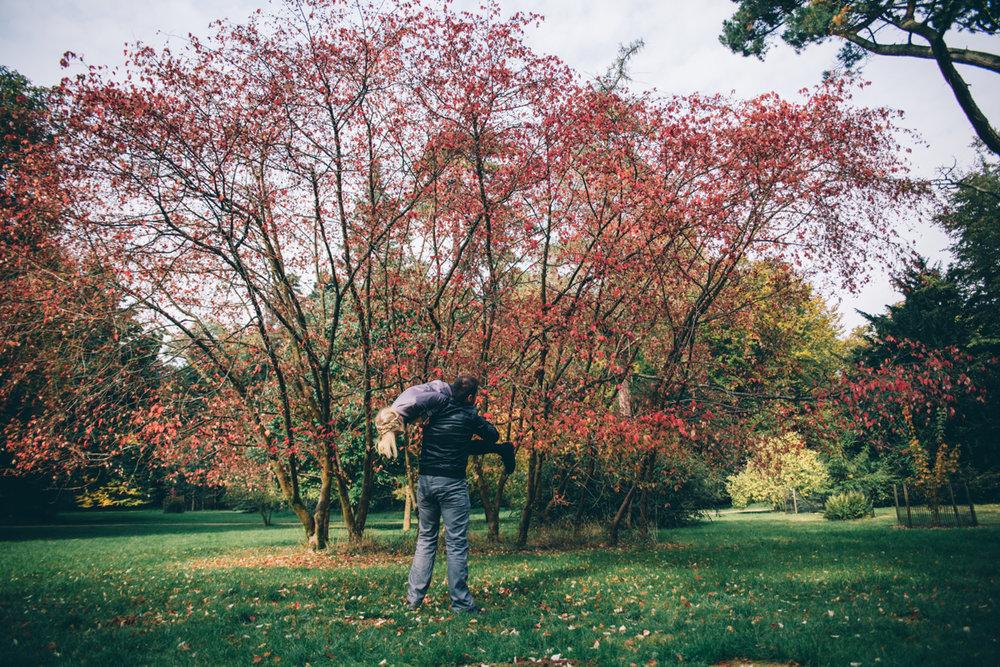 Laura + Venko Westonbirt Arboretum Autumn Preshoot Low-57.jpg