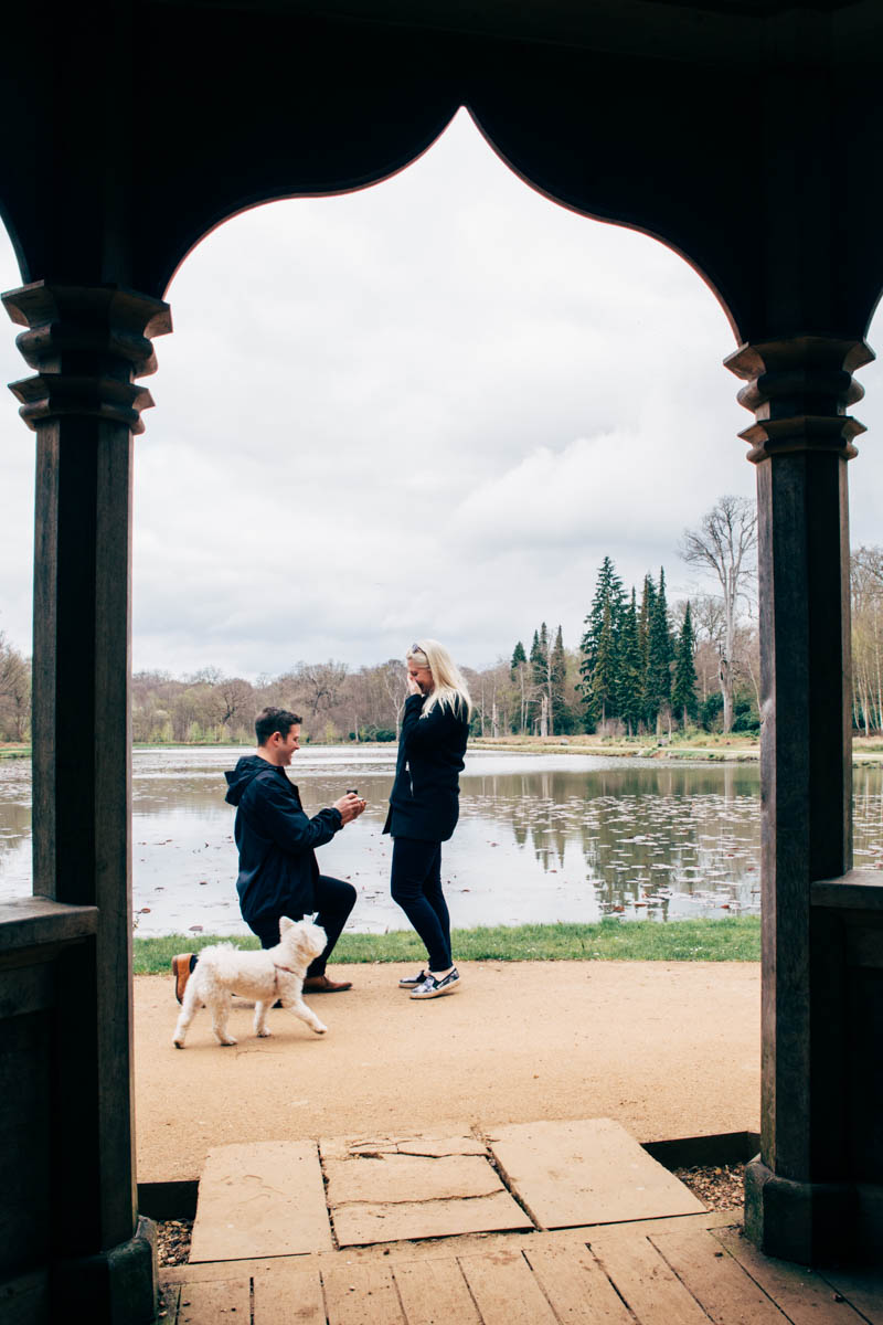 Emmie + Luke Proposal Shoot WIndsor Great Park NaomiJanePhotography-4.jpg