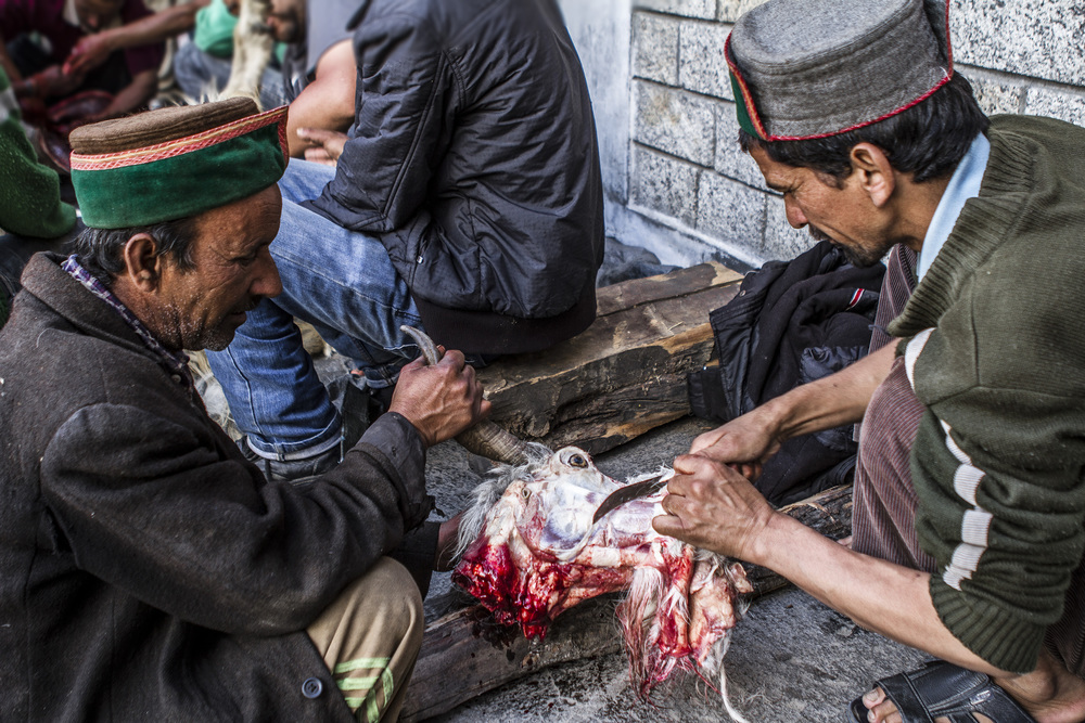 24 September, 2012 -   Sangla     Animal sacrifice on the final day of the Phulaich Festival