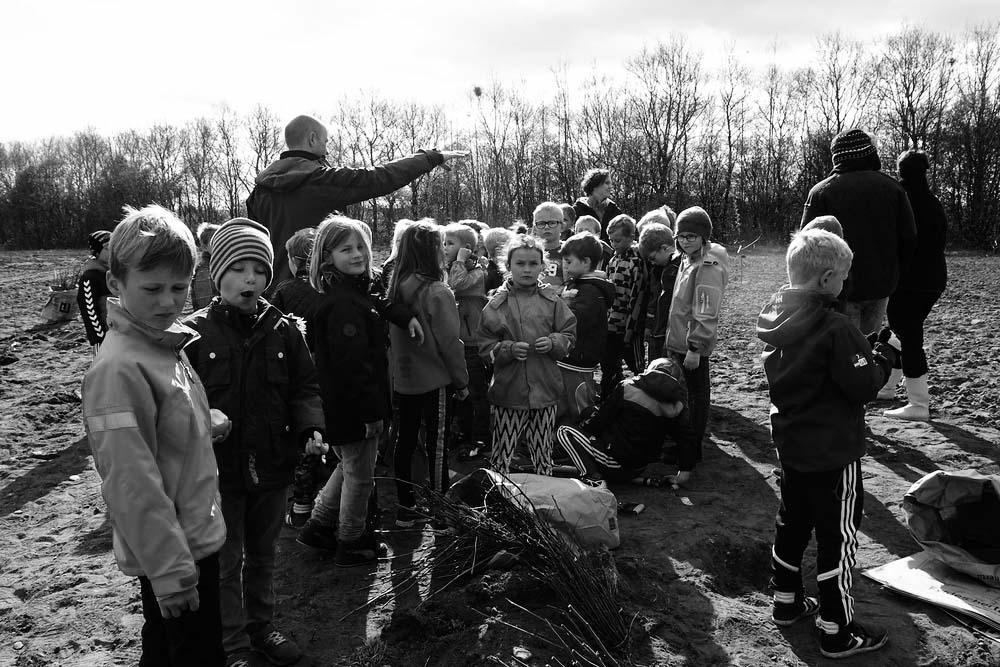 Skolen+planter+skov+i+Voel+-stor+13.jpg