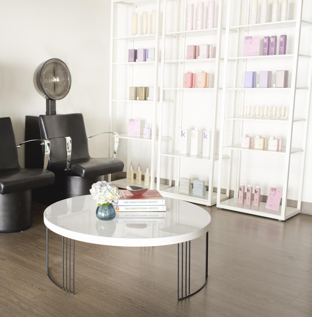 Salon-11.jpg
