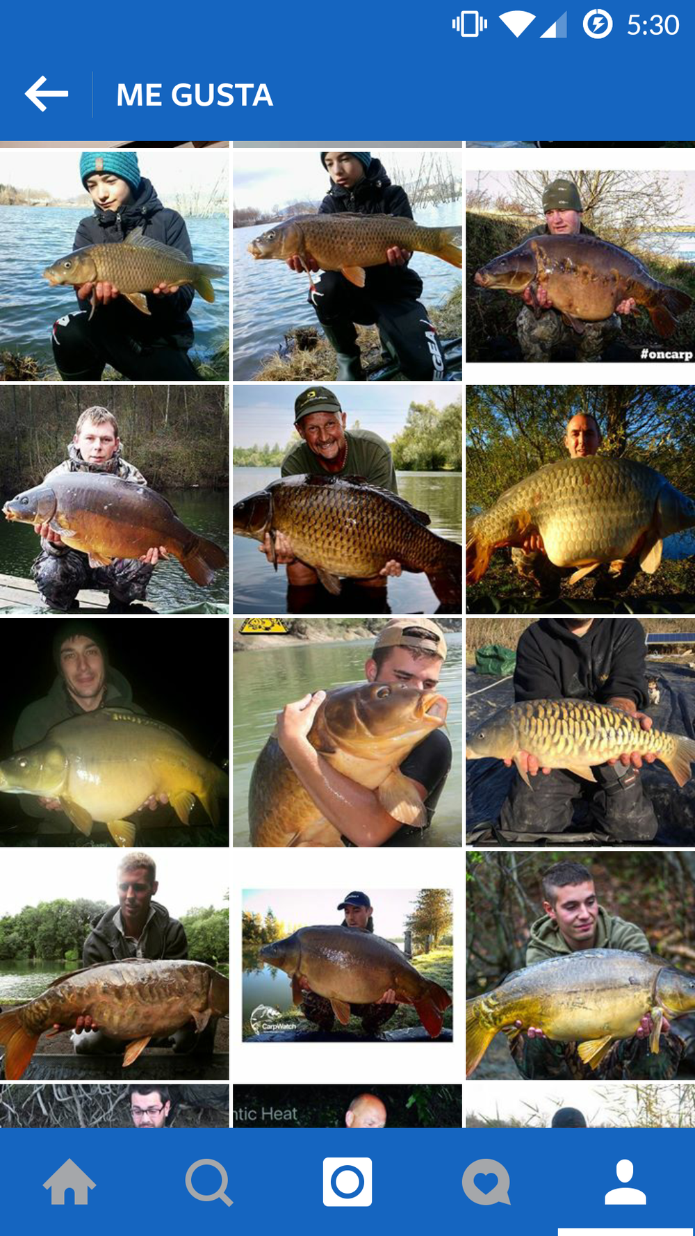 Carp anglers on on instagram.