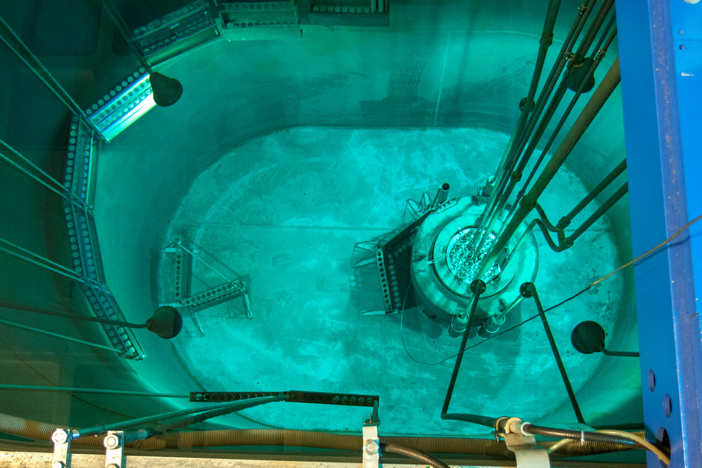 Reed Reactor, 2010