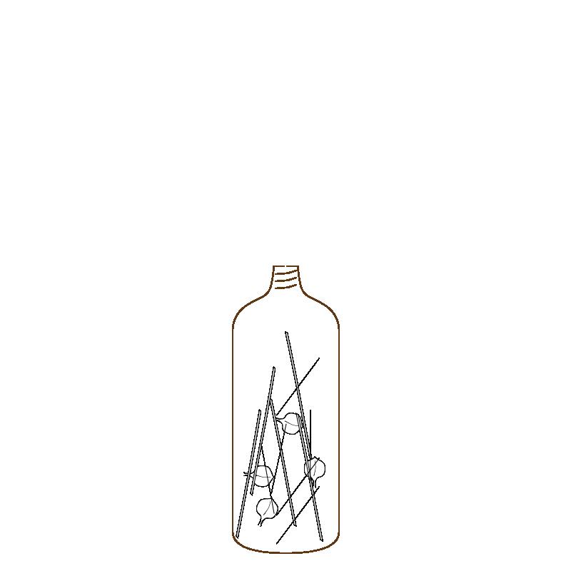 soda bottle.png