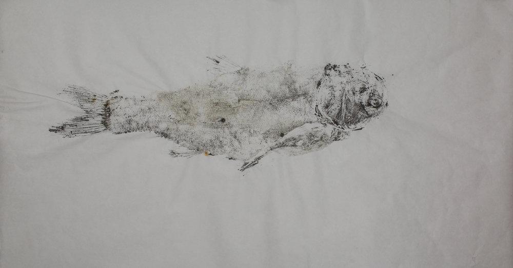 Gyotaku_009.jpg