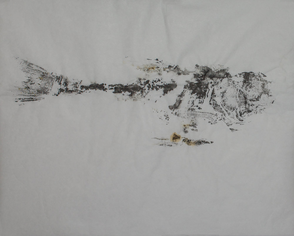 Gyotaku_013.jpg