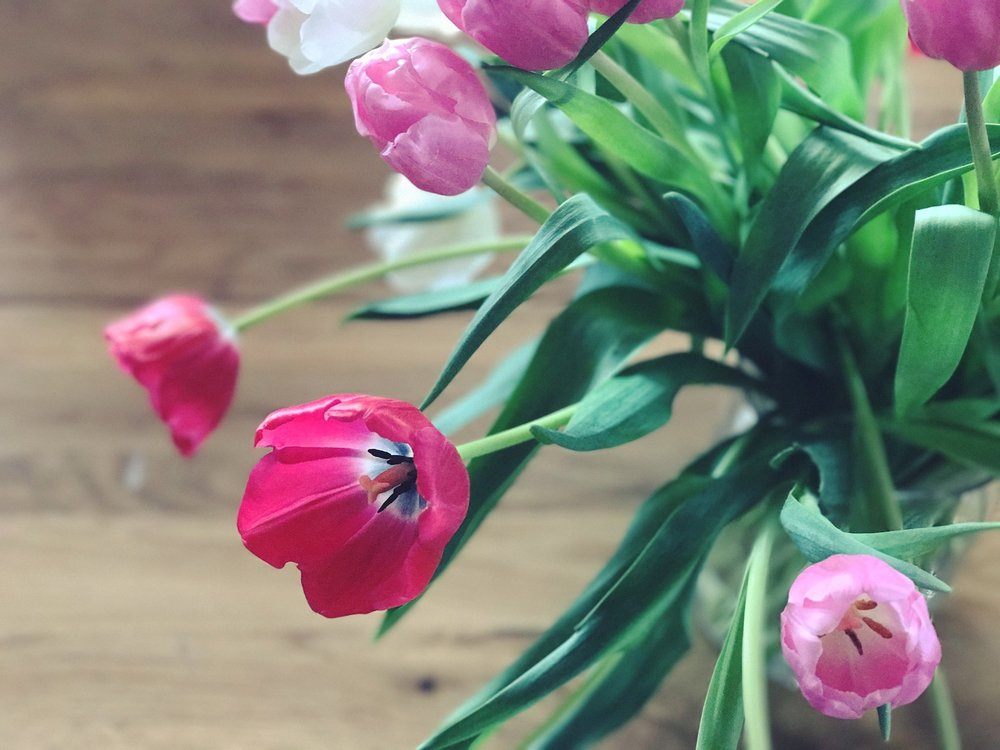 Tulips for Valentine's | thereluctantcook.blog