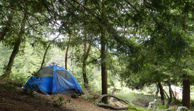 tent-resized.jpg