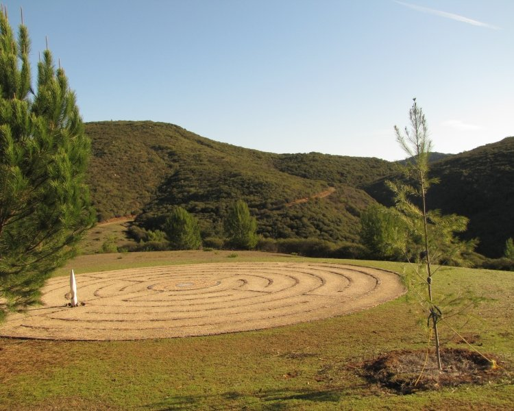 questhaven-labyrinth-pines-750x600.jpg