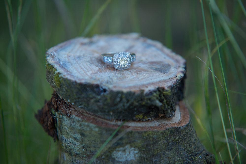 Surprise_Proposal_-22.jpg