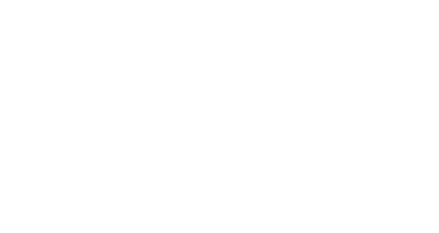 FancyBoy & Co.