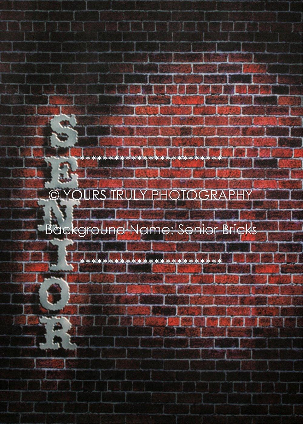 Senior Bricks.jpg