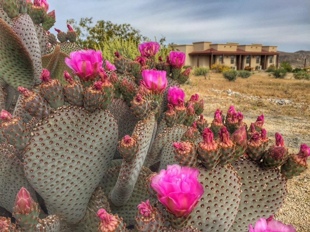 "My ""prison"" for 12 days - Vipassana Meditation Center in 29 Palms (Joshua Tree), CA."