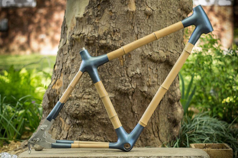 Bamboo-56-WR.jpg