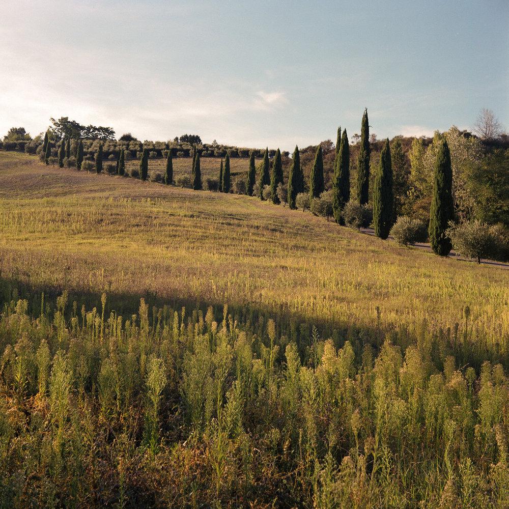 Stefanos Metaxas Tuscany sunset