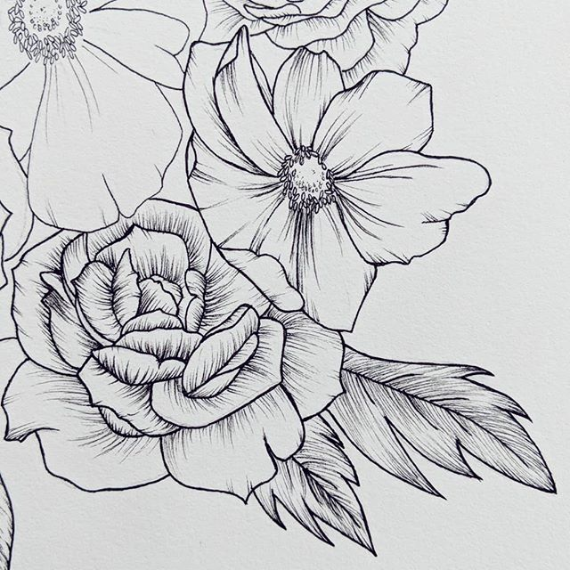 Fleshing out details. do you like watching time lapses or tutorials of drawings or would you rather see photos? I personally feel all the above, but I'm particularly fond of seeing detail photos. ______ @arches.art paper  @micronart & @fabercastellusa pens _____ #rebeccashores #floraldrawing #floralsyourway  #wipart #rebeccashoresmua #Smallartist #supportlocalar #seattleart #pnwartist #seattleartist #simplethingsmadebeautiful #BOTANICALART  #makearteveryday #artistsofinstagram #emergingartist #mybeautifulmess #seattle  #etsyartist  #floraldrawing  #micronpen