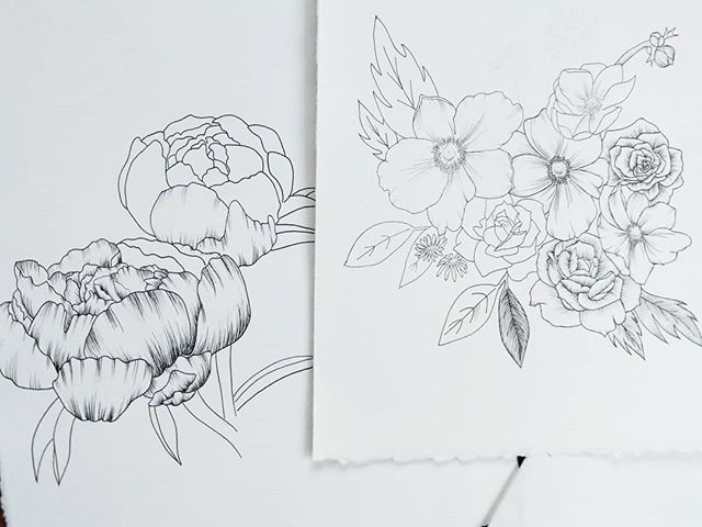 Which do you like better, the thick dark shading on the left or the lighter more delicate shading on the right? I think I like the right better so we stopped by @blickartmaterials to get more tiny pens and then going to finish these both up.  ______ @arches.art paper  @micronart & @fabercastellusa pens _____ #rebeccashores #floraldrawing #floralsyourway  #wipart #rebeccashoresmua #Smallartist #supportlocalar #seattleart #pnwartist #seattleartist #simplethingsmadebeautiful #BOTANICALART  #makearteveryday #artistsofinstagram #blickartmaterials #emergingartist #mybeautifulmess #seattle #archespaper #pigmamicron #artforsale #etsyartist #fabercastell