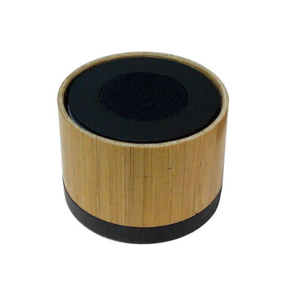 Indian Beach Bluetooth Speaker 2015.jpg
