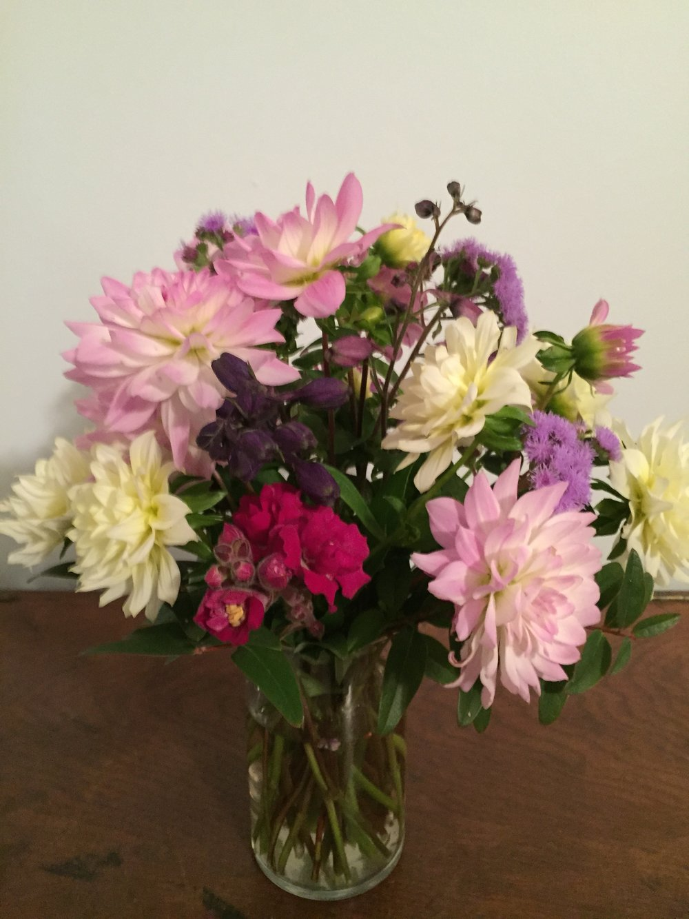 October- Ageratums, Dahlias, Delphiniums, and Snapdragons