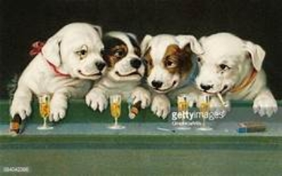 dogs drinking beer.jpg