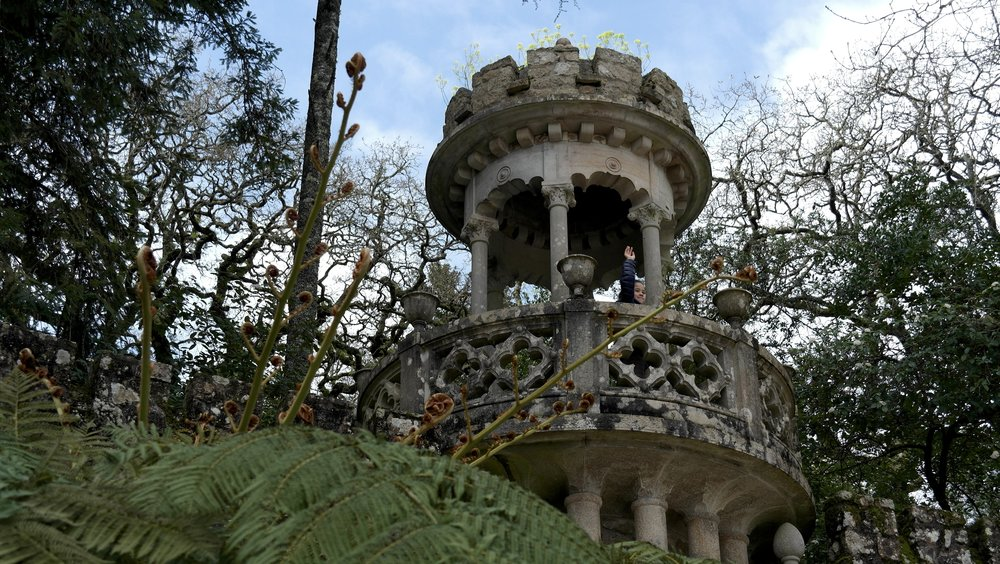 Enchanted cloud forest at Sintra