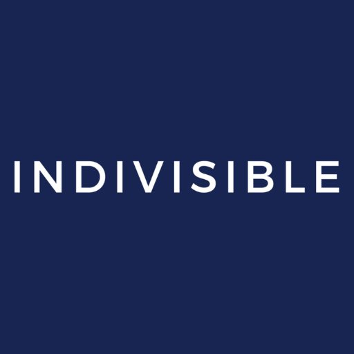Indivisible logo.jpg