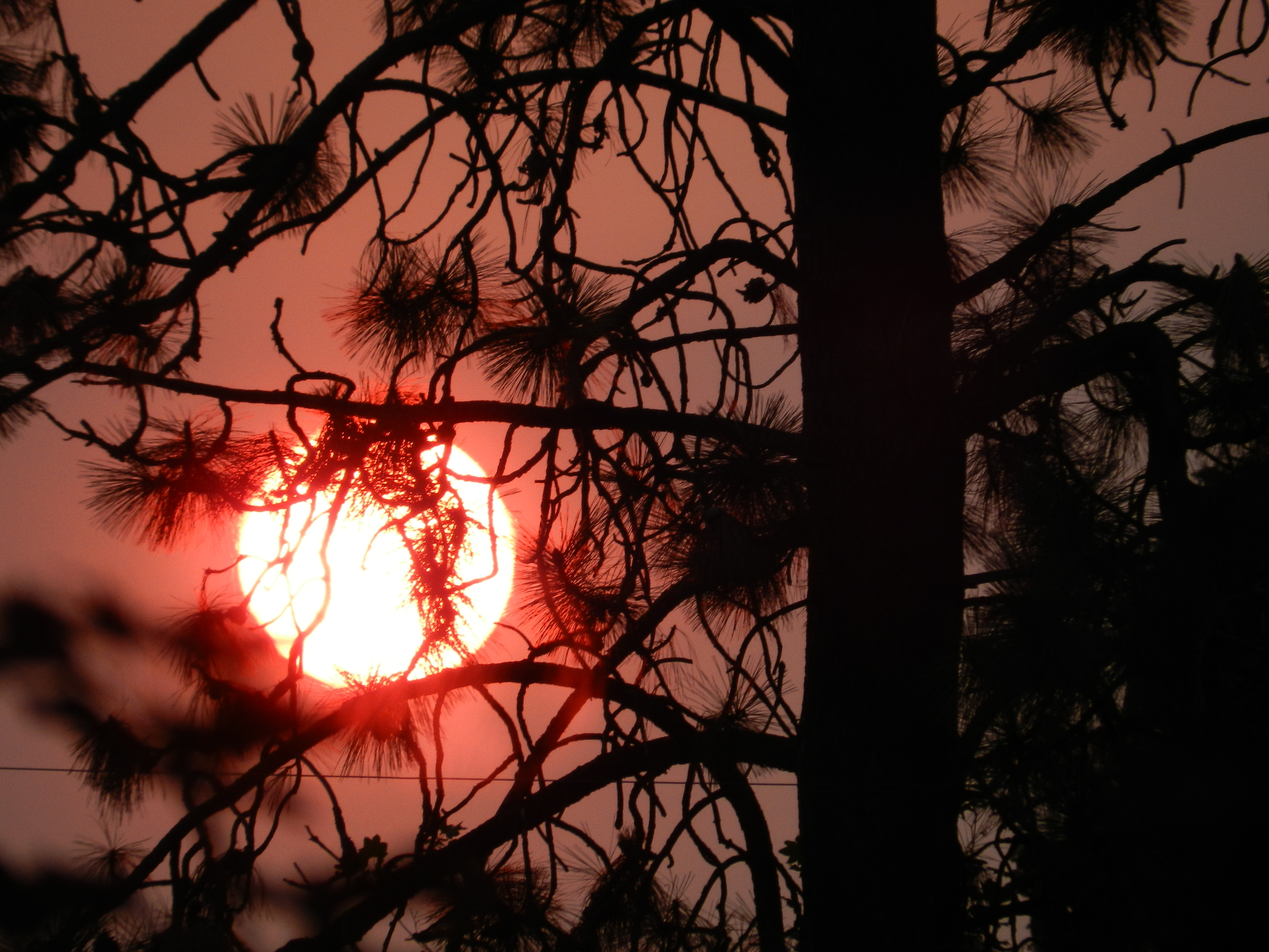 Smoky Sunrise (2)