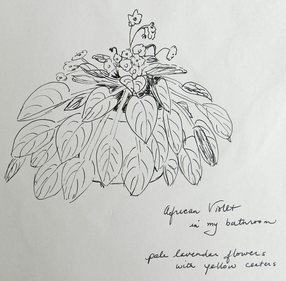 Older Sketches (3)