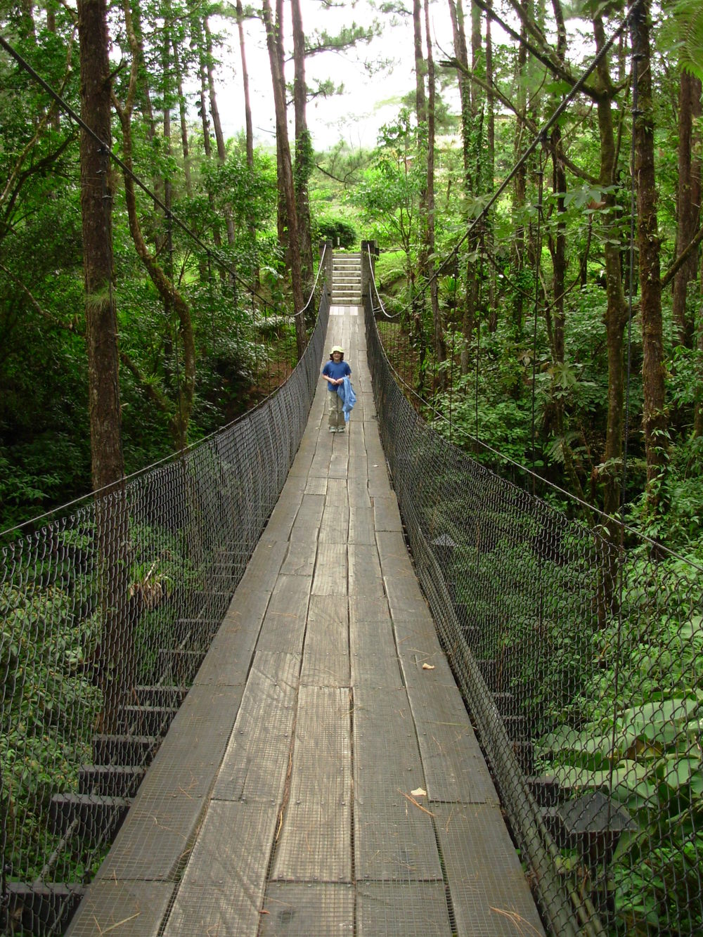 hanging bridge at Arenal Observatory Lodge