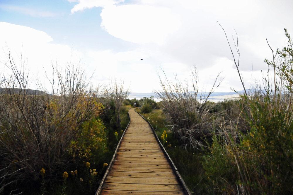 Mono Lake (3).JPG