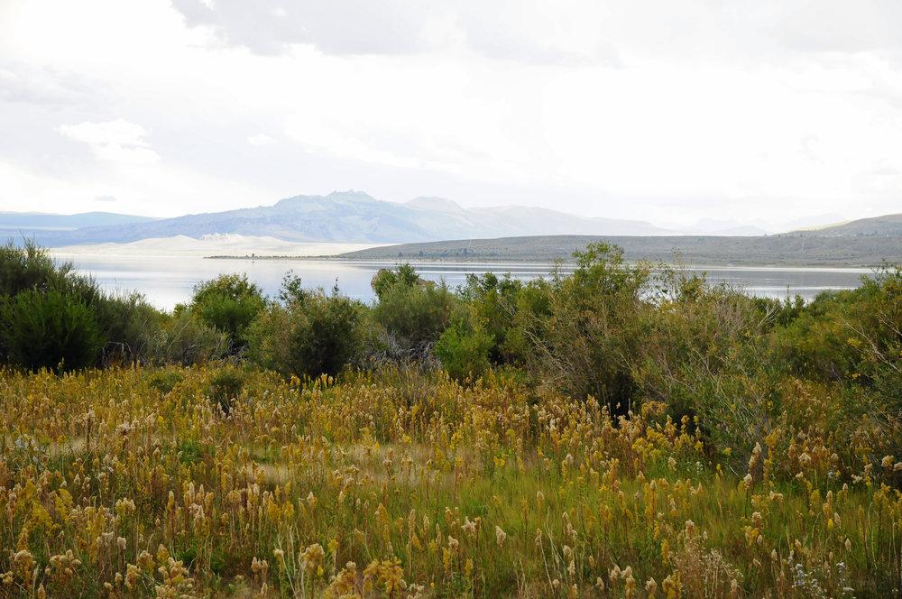 Mono Lake (4).JPG