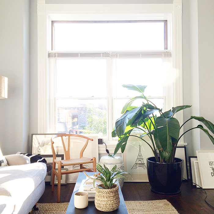 alaina-kaczmarski-living-room-styling-3.jpg