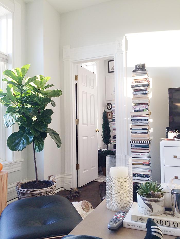 alaina-kaczmarski-living-room-styling-12.jpg