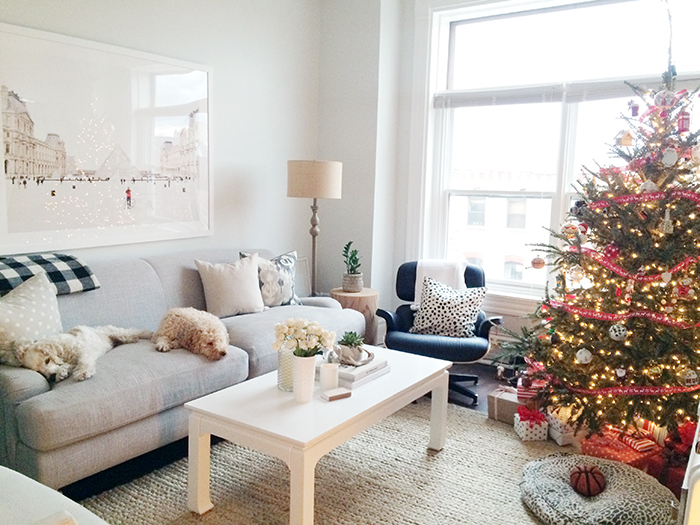 alaina-kaczmarski-living-room-styling-17.jpg
