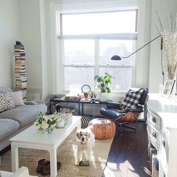 alaina-kaczmarski-living-room-styling-27.jpg
