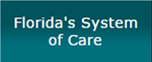 Sednet-Nav-Floridas-System-of-Care.jpg