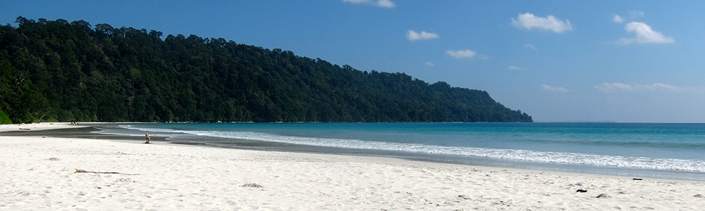 andaman island yoga and diving retreat.jpg