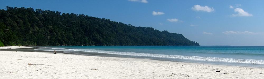 andaman island yoga and diving retreat.jpg