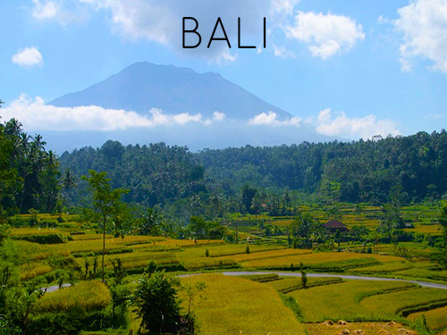 Bali mindfulness nature retreat