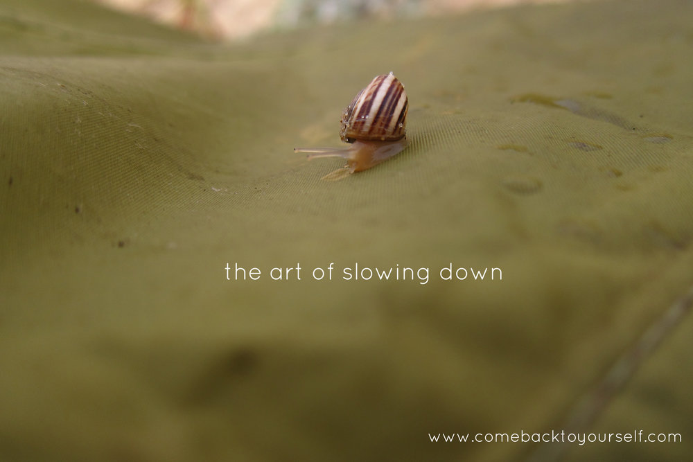 the art of slowing down come back to yourself retreats
