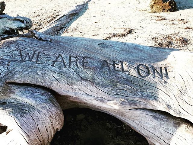We are all one  #comebacktoyourself #yogadivingretreat #mindfulliving #walkonthebeach #driftwood #driftwoodbeach #weareallone #yogareatreatbali #yogabali #yogaeveryday #mindfulness #walkingmeditation