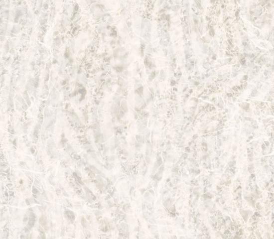 DTB - Tiles - Zebra.jpg