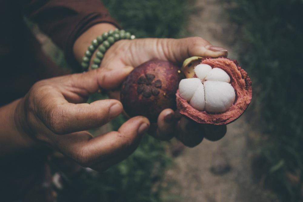 Muinaiset suomalaiset eivät koskaan saaneet maistaa tätä hedelmää. Hedelmän nimi on mangustin. Se on todella makea.